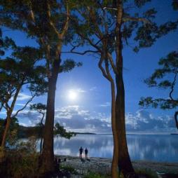 NSW Parliamentary Plein Air Photographic Prize