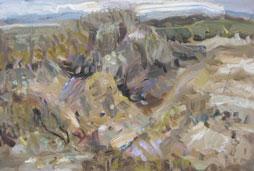 low-res-Ridge-Study--Gallipoli.-oil-on-canvas,-2014,-30x-40cm