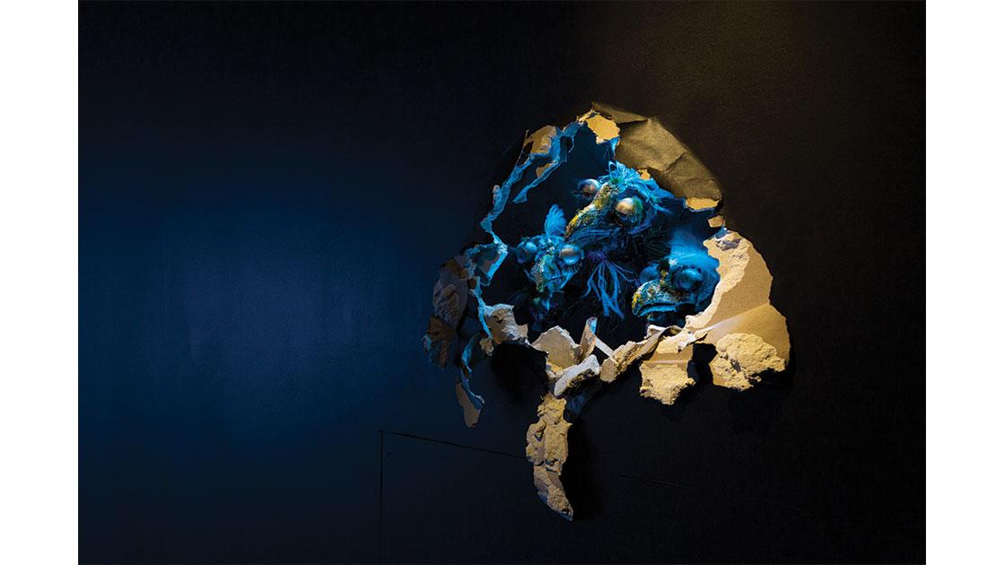 Daniel-Gallery-2