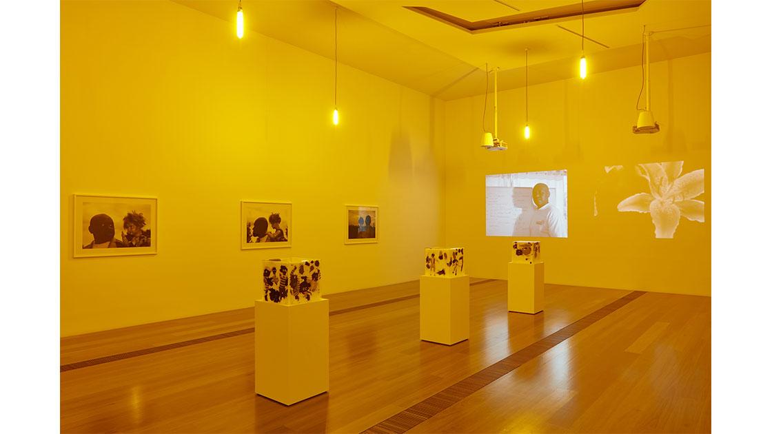 Gallery-Image9.jpg