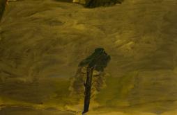 Idris Murphy Wins 2014 Gallipoli Art Prize